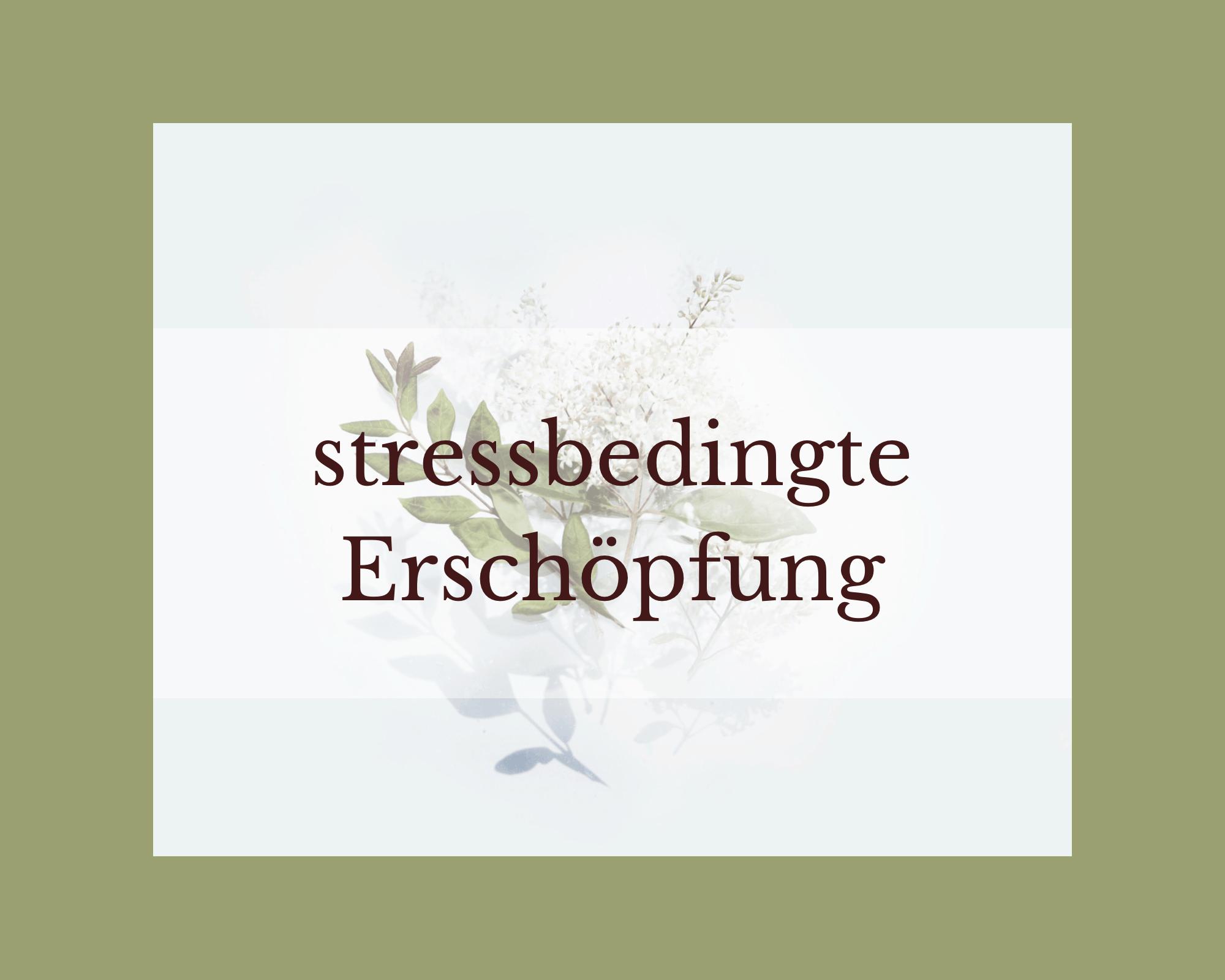 Stressbewältigung und Stressmanagement