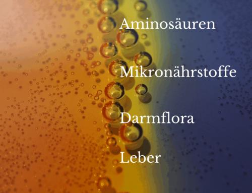 Darmflora und Hormone